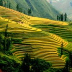 sapa-tours-su-pan