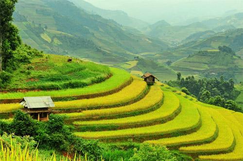 Kết quả hình ảnh cho Muong Hoa valley