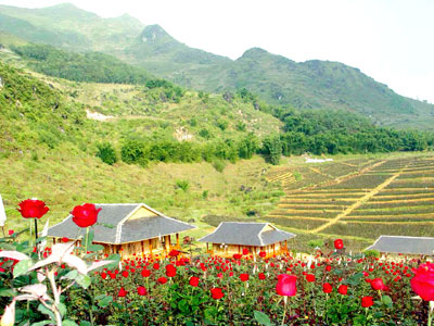 The Rose Valley  Sapa Tours - Sapa Vietnam Tours
