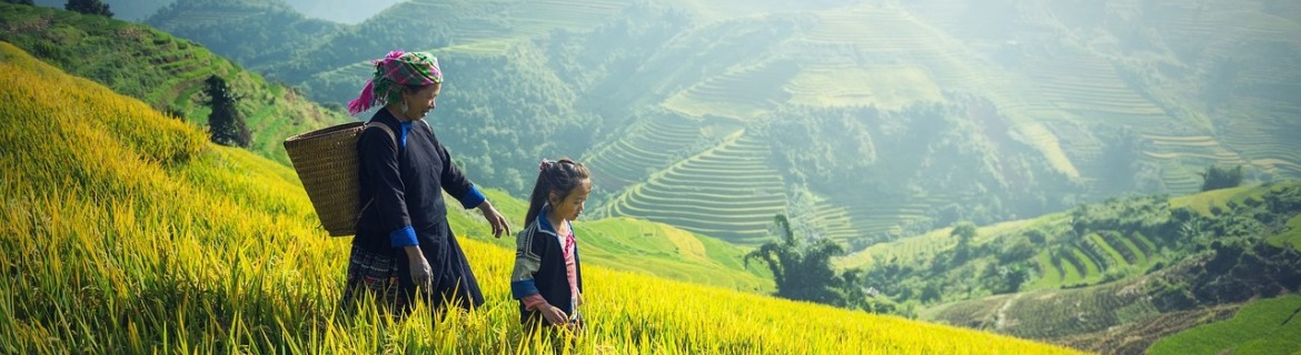 Sapa Halong Package tours
